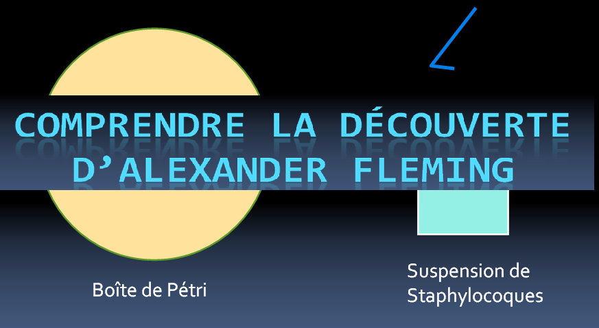 comprendre-la-decouverte-dalexander-fleming-antibiotique