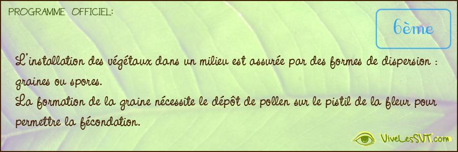 Fleur Vive Les Svt