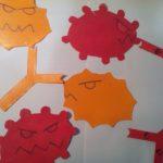 Maquettes anticorps antigène SVT complexe immun réaction immunitaire (20)