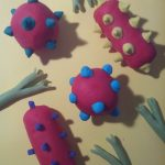 Maquettes anticorps antigène SVT complexe immun réaction immunitaire (9)