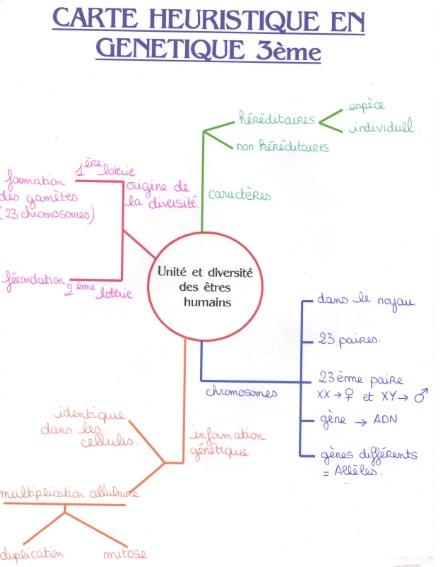 Exemple de Dissertation Philosophique