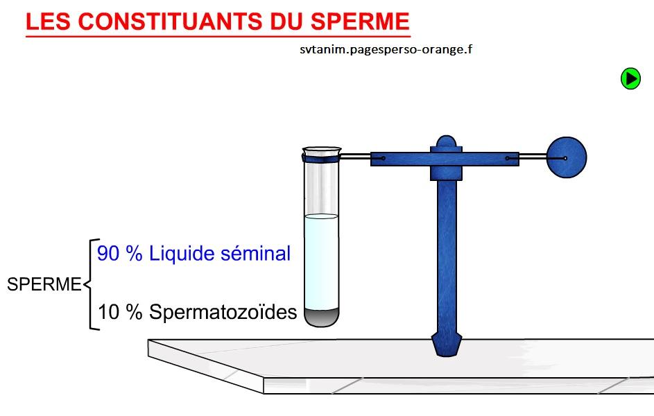 les constituants du sperme SVT
