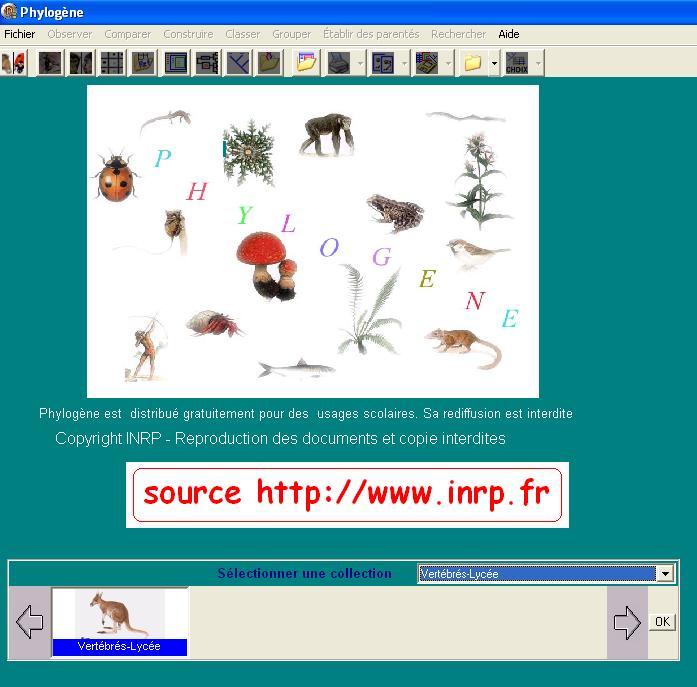 phylogene-logiciel