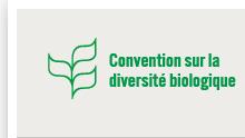 convention-diversite-biologique