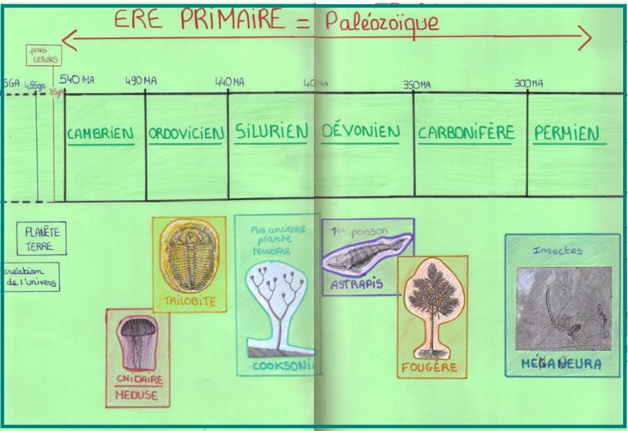 frise-chronologique-evolution