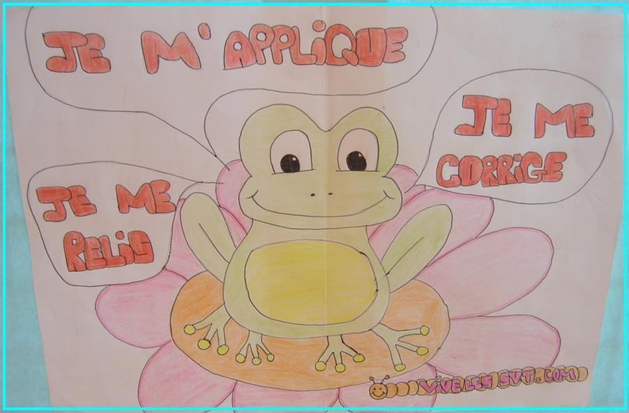 grenouille-svt