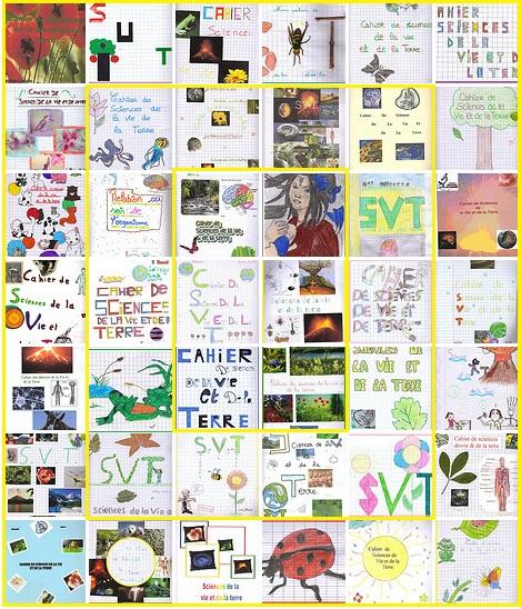 illustrations-svt-4eme