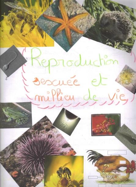 reproduction-sexuee-et-milieu-de-vie3