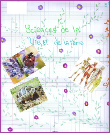Exemple De Decoration Objet D Art Avec Des Organisme Vivants