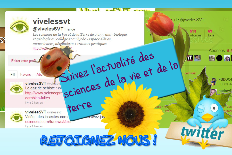 Les news SVT