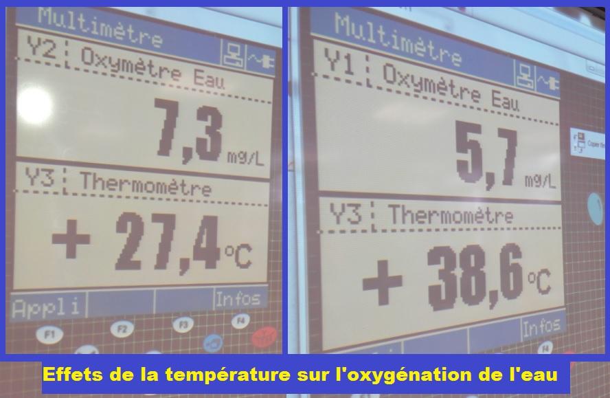 effets de la température sur oxygénation de l'eau