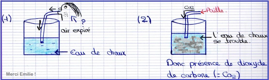 Attractive A Quoi Sert L Eau De Chaux #6: Echange ...