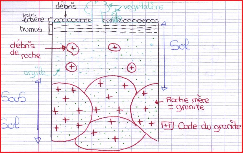 Svt 5eme Vive Les Svt