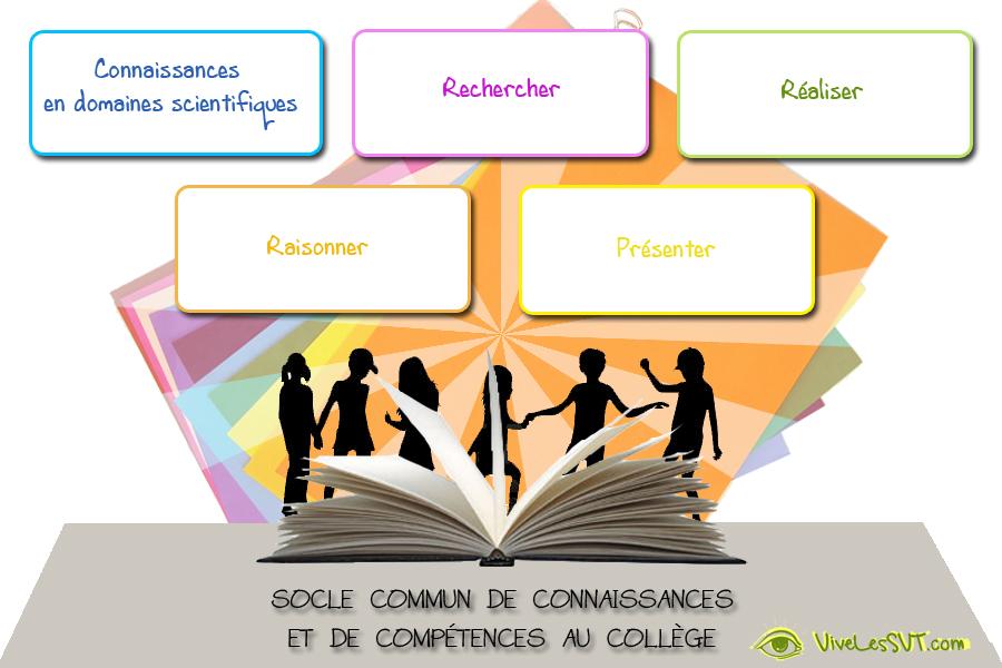 socle commun de connaissances et de comp u00e9tences en svt