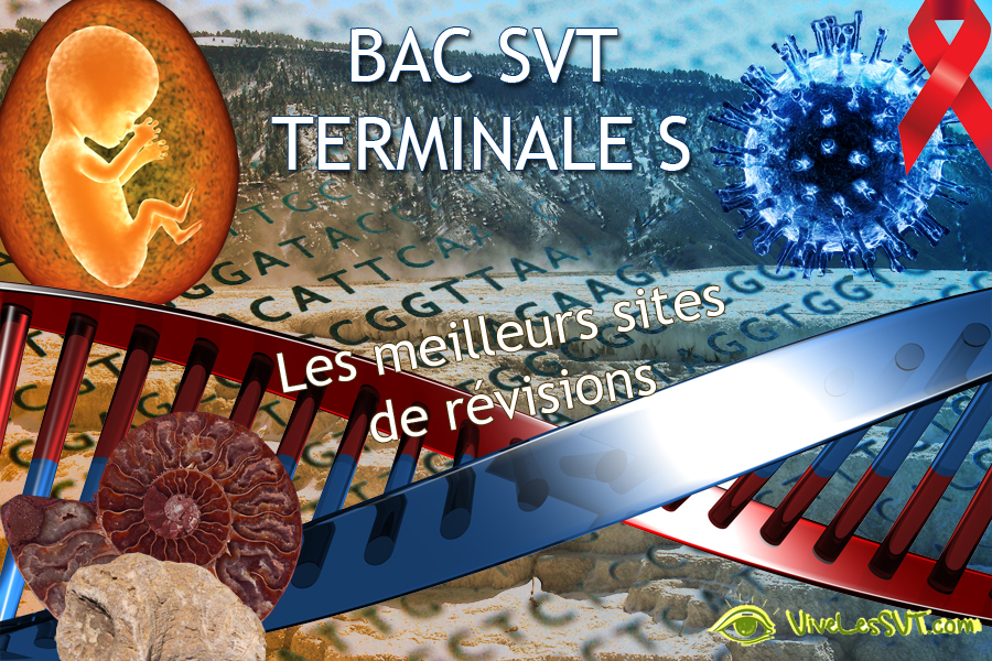 MISSION BAC SVT 2019