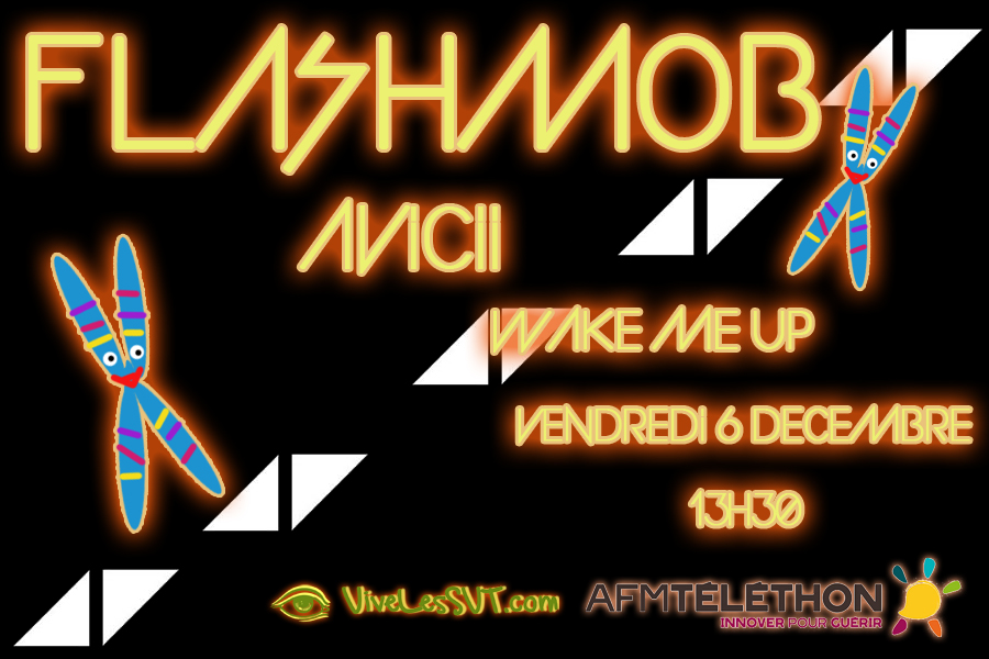 flashmob avicii 2