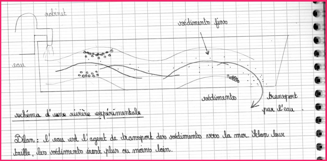 Formation De Roches S 233 Dimentaires Et Fossilisation Cours