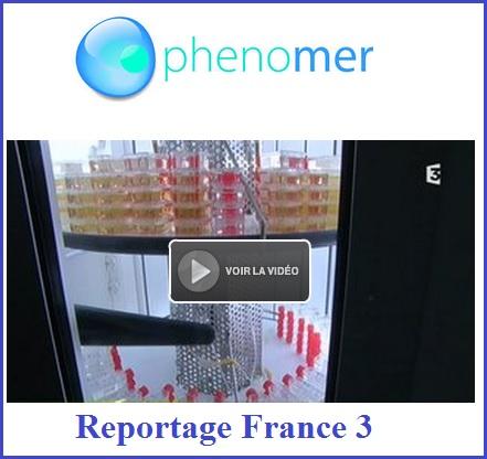 France 3 phenomer Bretagne