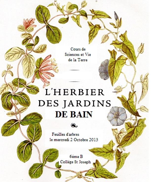 herbier 2013