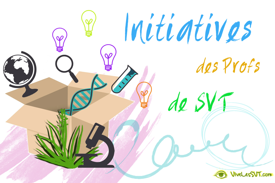 initiatives   svt