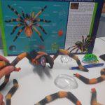 Classification des espèces maquettes animaux SVT 3D 4D (7)