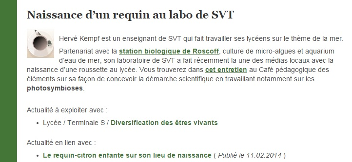 requin au labo de SVT article eduscol