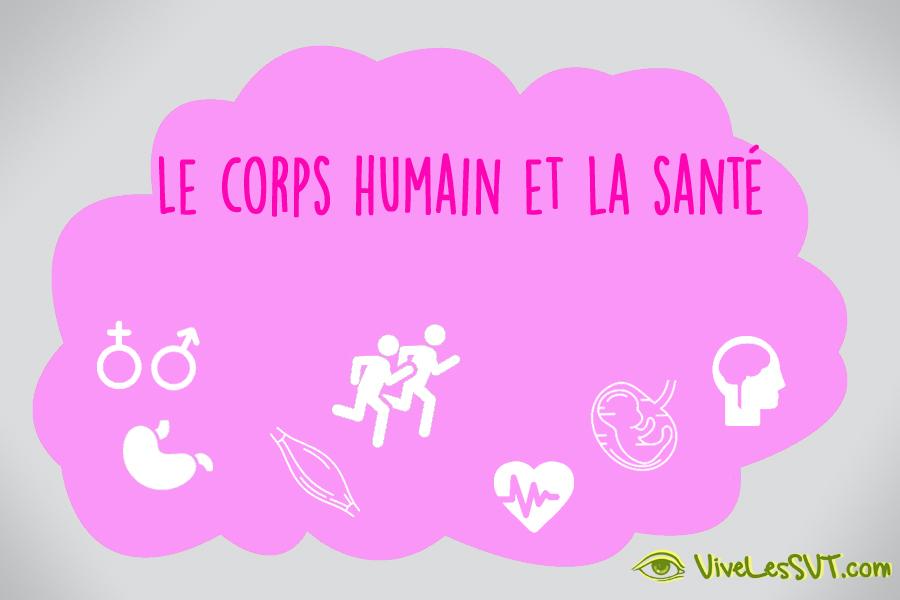 Le corps humain et la santé nouveaux programmes SVT cycle 4