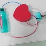 Modélisation de la circulation sanguine SVT (9)