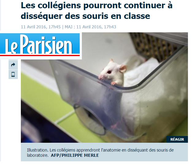 Le parisien dissection SVT