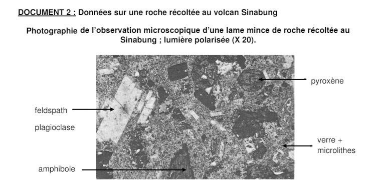 Sujet BAC s épreuve SVT Obligatoire métropole (6)