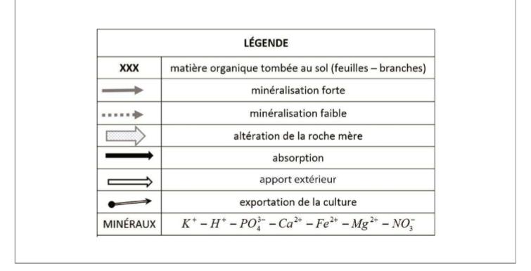 science et vie avril 2016 pdf