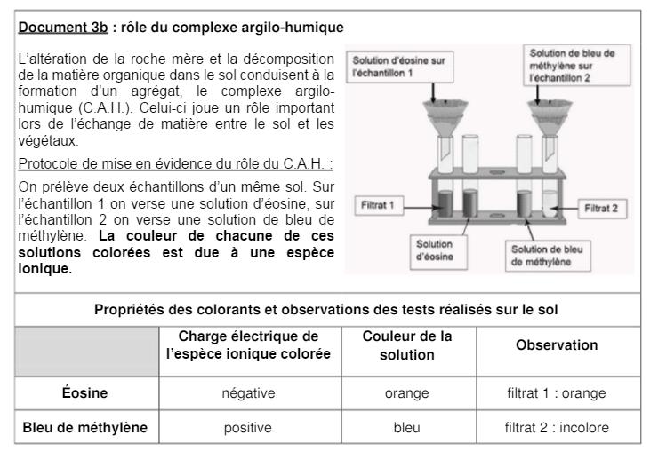 Sujet Bac Sciences ES L métropole 2016 (7)