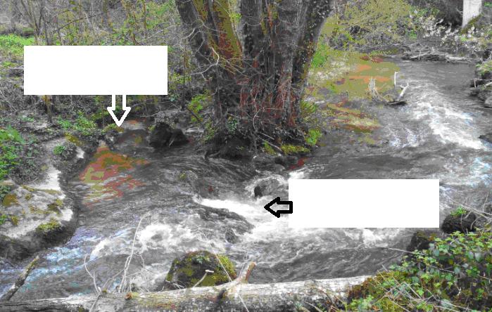 transport des sédiments rivière le Tiercent