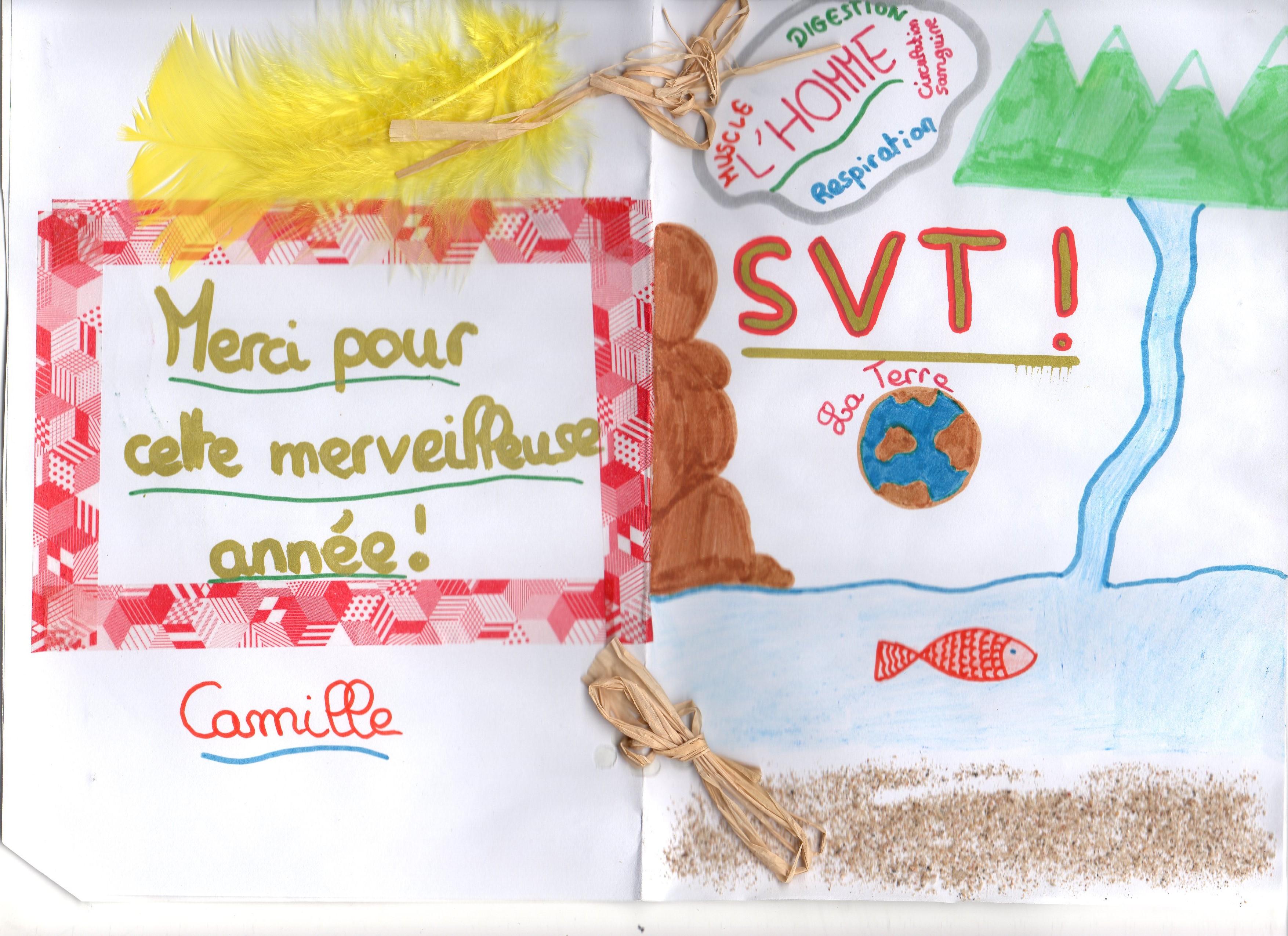 un an de SVT collège Assomption Rennes classe de 5ème (17)