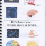 De l'oeil au cerveau quelques aspects de la vision – SVT 1ère (2)