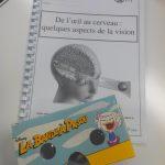 De l'oeil au cerveau quelques aspects de la vision – SVT 1ère (5)
