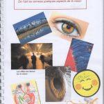 De l'oeil au cerveau quelques aspects de la vision – SVT 1ère (7)