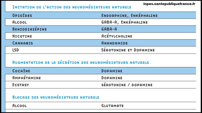 drogue-et-neuromediateurs-svt-neurone-synapse