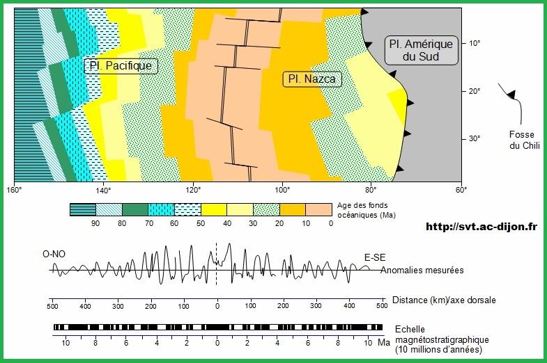 dorsale-pacifique-est-age-des-fonds-oceaniques-et-anomalies-magnetiques-svt-1ere-s