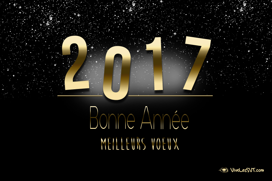 meilleurs-voeux-2017-association-vivelessvt-4