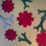 modelisation-anticorps-antigene-svt-systeme-immunitaire-14