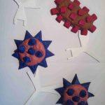 modelisation-anticorps-antigene-svt-systeme-immunitaire-27