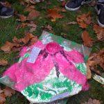 modelisation-de-volcans-svt-4eme-effusif-explosif-11