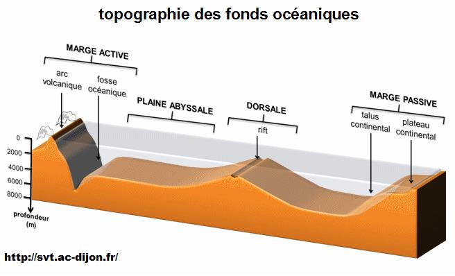 topographie-des-fonds-oceaniques