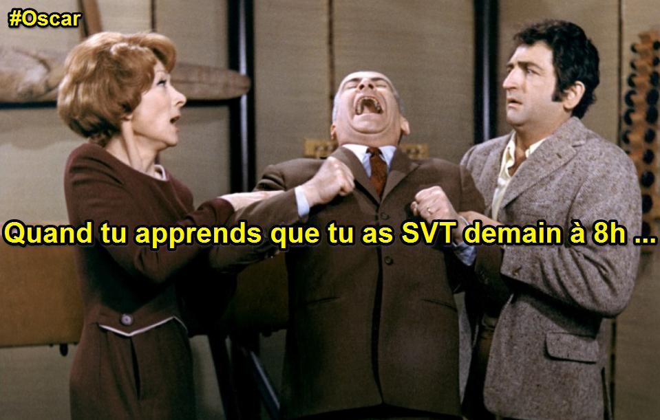 Louis de Funès aime les SVT (3)