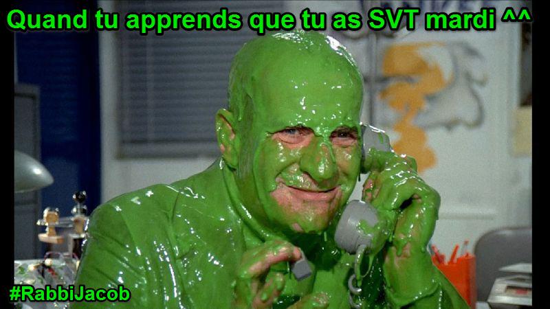 Louis de Funès aime les SVT (4)