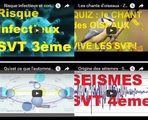 chroniques radio SVT Julien Cabioch