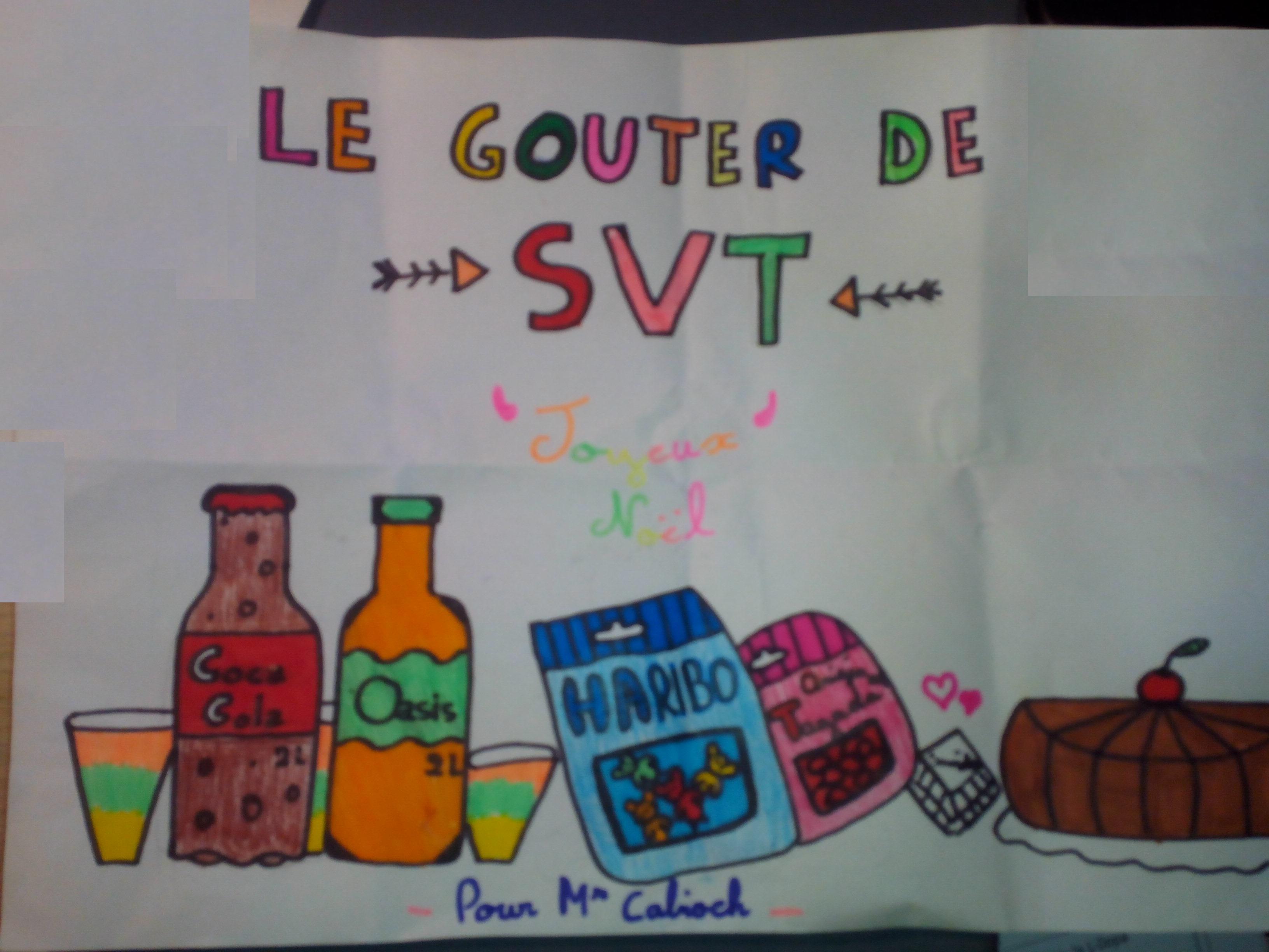 Noël cadeaux élèves SVT vivelesSVT (3)
