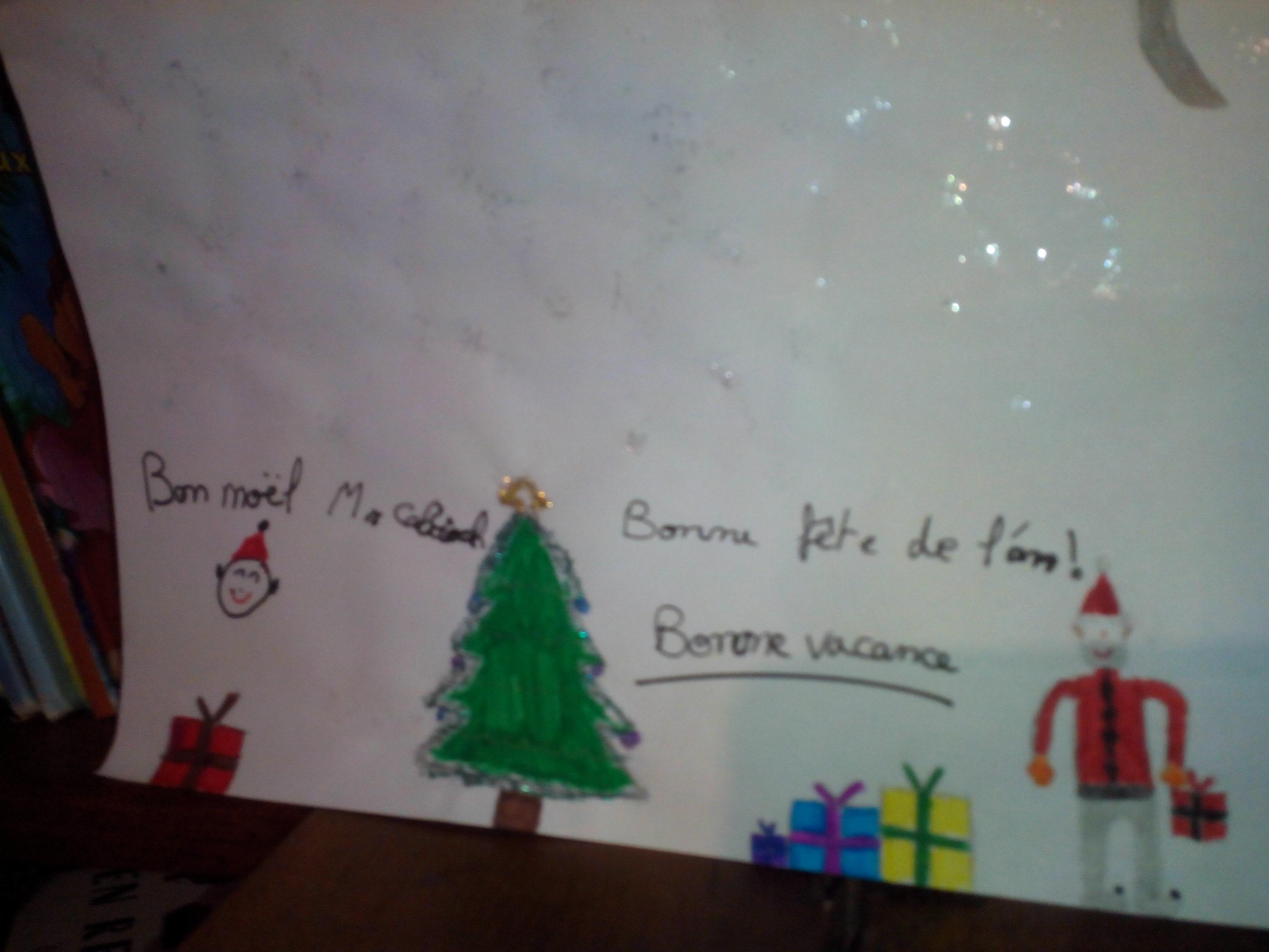 Noël cadeaux élèves SVT vivelesSVT (5)