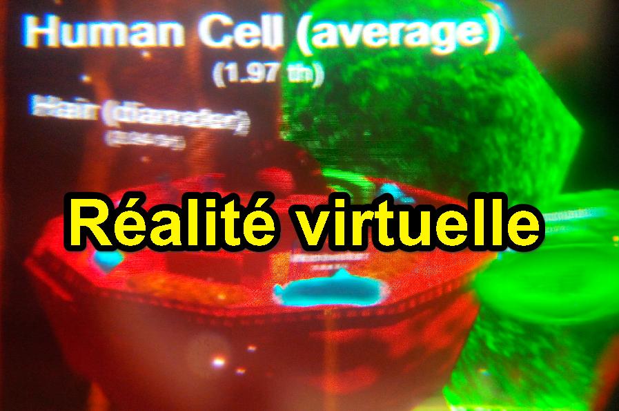réalité virtuelle en SVT